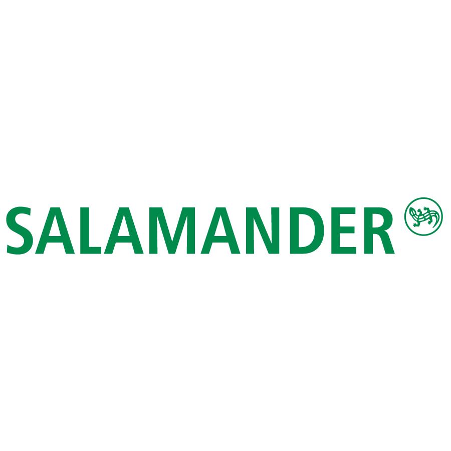 magazin incaltaminte salamander targoviste
